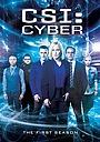 Серіал «CSI: Кiберпростiр» (2015 – 2016)