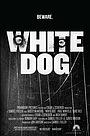 Фильм «Белая собака» (1982)