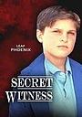 Фильм «Тайный свидетель» (1988)