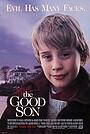 Фільм «Хороший син» (1993)